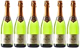 CRUSE Vin de France Vin Mousseux Blanc de Blancs Demi-Sec 750 ml - Lot de 6