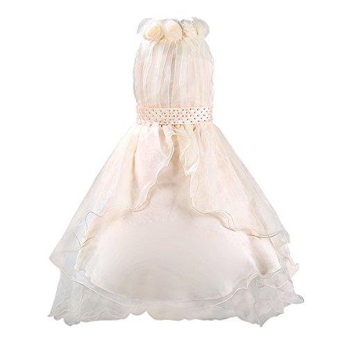 Katara 1518 - Schleier Blumen Mädchen festliches Abend Kleid, 104/110, beige: (Herstellergröße: 110) (Kommunion Online Kleider Billig)