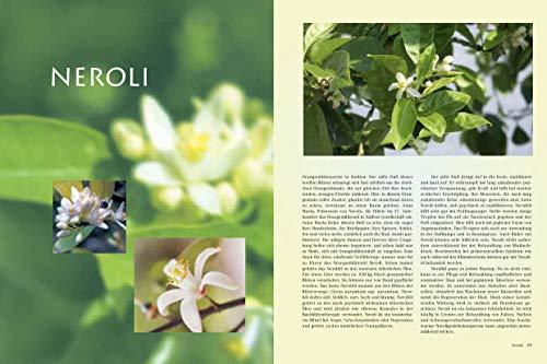 Himmlische Düfte: Das grosse Buch der Aromatherapie - 3