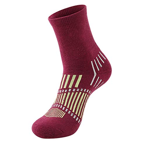 Merino Ladies Wool Socks Riding Randonnée Randonnée Ski Chaussettes