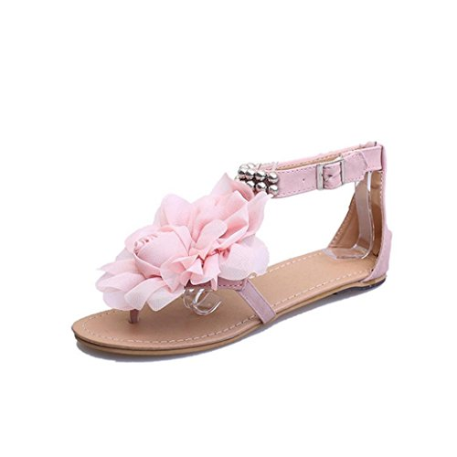 DM&Y 2017 Xia Jiping unteren flachen Ferse Sandalen B?hmen weiblichen Bl¨¹ten beil?ufige weibliche Sandalen Pink