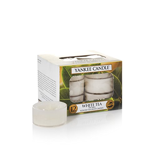 Yankee Candle Bougie en pot PURE Essence 2016, Tea Lights