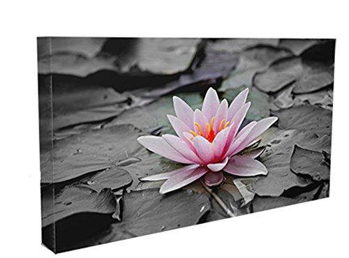 Acqua Lilly floreale Box Stampa Su Tela-Wall Decor-Galleria d' arte moderna con cornice pronta da (Gift Box Galleria)