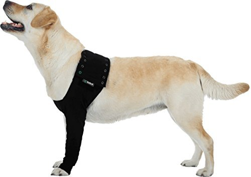 Suitical Recovery Hundemantel, Größe XXS, Schwarz - Komfort Stoff Bandagen