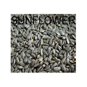 Amijivdaya Sunflower Seed Bird Food, 2 Kg