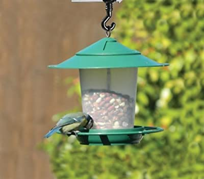 Hanging Lantern Bird Seed & Nut Feeder Green by Garland