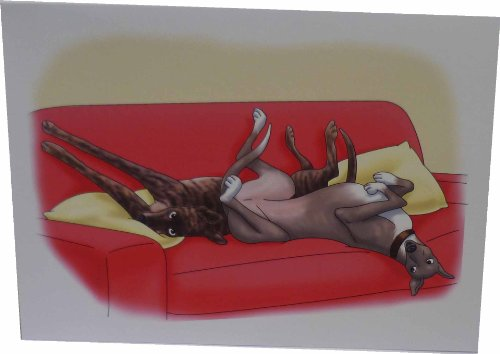 greyhounds-divano-biglietti-colore-rosso-confezione-da-10