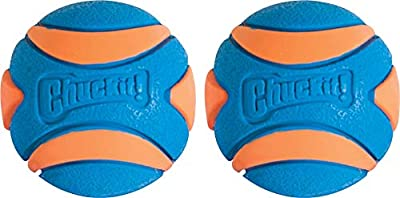 Chuckit Ultra Squeaker Ball Small 2-pack by Chuckit