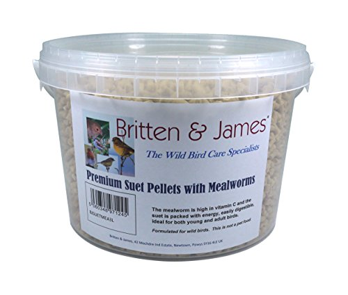 Britten & James Pellet di suino Premium Salotto. Un Fantastico integratore energetico per Uccelli Selvatici in Una Vasca richiudibile di 3 Litri. Il Verme della Farina è Ricco di proteine.