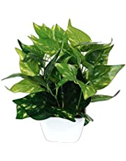Pindia Plastic Miniature Money Plant Leaf Artificial Indoor/Outdoor Plant Decorative Plant with Pot