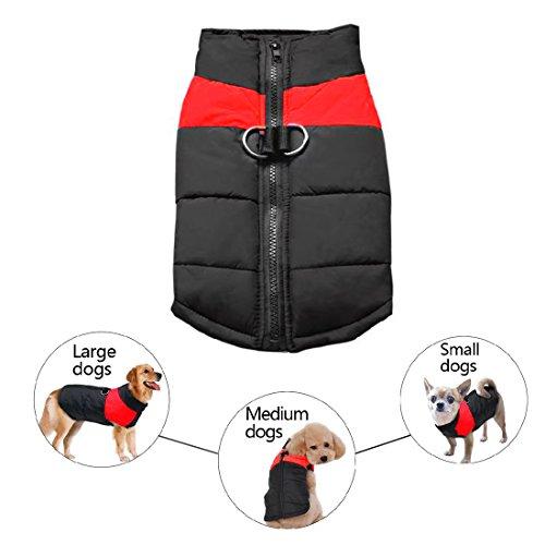Abrigo impermeable para perro, cálido acolchado, chaleco polar abrigos de invierno con...