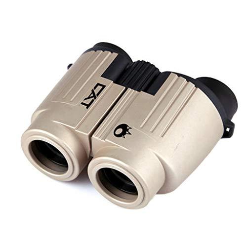 Fernglas Outdoor Sightseeing Teleskop Reise Spiegel 10 * 25 Low Light Level Nachtsichtbrille Pocket Student Fernglas mit Spiegeltasche und Schlüsselband ( Color : GRAY , Size : 12*8.9CM ) -