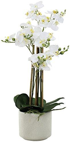 Künstliche Orchidée mit Keramik Übertopf XL - 46cm Blüten weiß - Topf creme-grau Creme Topf