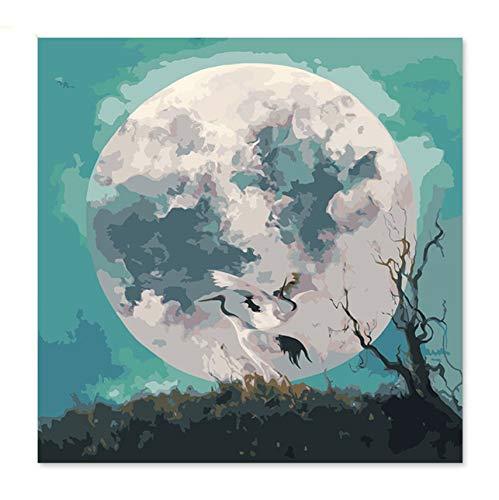 hlen Kunst Malen Nach Zahlen Gekrönt Kran Kristallkugel Digital Painting Transparent Ball Glowing Ball Moon Crow Frameless 40X50Cm ()