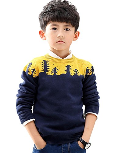 NABER Little Boys' Kids Sweatshirts Fitted Knitwear Pullover Crew Neck Sweaters 3-8 Years (3-4 Years)