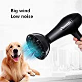 Séchoir De Toilette pour Chien De Compagnie Professionnel Séchoir pour Chien De Compagnie Grand Chien Dédié Haute Puissance Sèche-Cheveux pour Cheveux 220V 1400W Noir