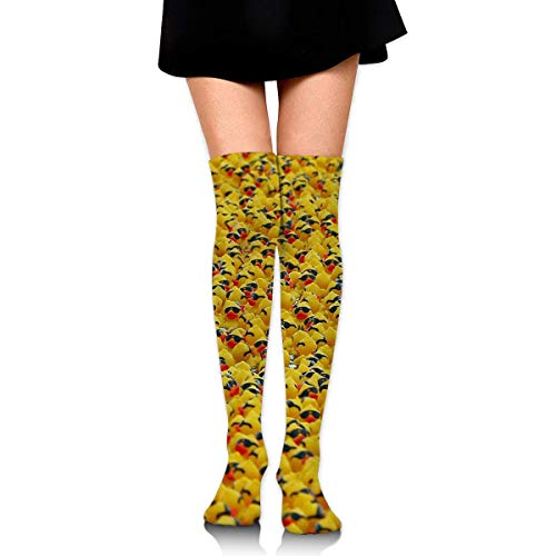 XIUZHIZH Women Teens Girls Over Knee Thigh High Boots Socks Tube Leg Warmers Stocking Cotton Cosplay Long Comfortable Leggings Pure Natural Cute Rubber Yellow Ducky with Sunglasses Sock - Purple Knee High Boots
