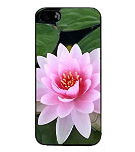 ifasho Designer Back Case Cover for Apple iPhone 5S (Flower Water Lily National Flower Kain Padma Patra )