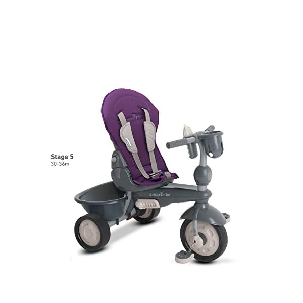 smarTrike 8400500 Baby Tricycle Smartrike Adjustable/ removable, telescopic touch steering parent handle, reclining seat 5-point seat harness and safety bar Quality storage bag coordinated with detachable and adjustable canopy, shoulder pads and seat pad 6