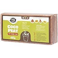650g (9L) di fibra di cocco   Cocco Fiori Terra sorgente Terra   rettili substrato   substrato naturale per terrario   100% pura fibra di cocco   terriccio senza torba
