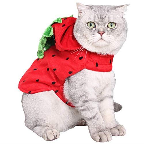 ANIAC Pet Halloween Verstellbar Strawberry Hoody Kostüm Katzen Kleine Hunde (Rot)
