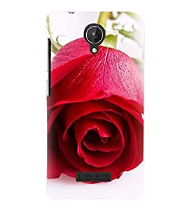 Printvisa Blooming Red Rose Pic Back Case Cover for Micromax Canvas Spark Q380