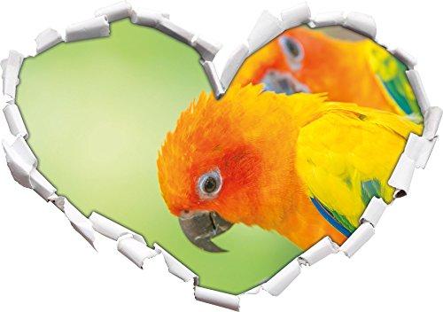 coppia Parrot a forma di cuore in