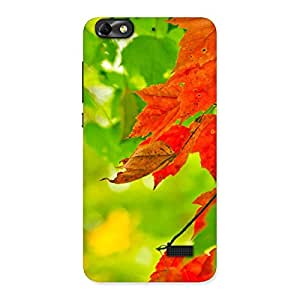 Special Auti Leaf Back Case Cover for Honor 4C