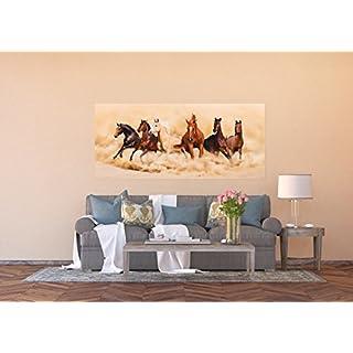 AG Design FTG 0948  Pferde Papier Fototapete, mehrfarbig, 202 x 90 cm