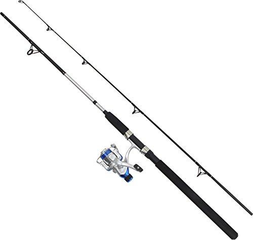 2-teilige Steckrute Angelset Rute Angel Forelle Barsch Spinning Fishingequipment Angelausrüstung 200 cm, 10-30 g