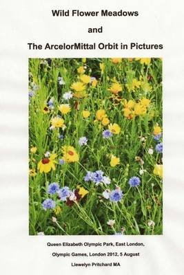 wild-flower-meadows-and-the-arcelormittal-orbit-in-pictures-by-author-llewelyn-pritchard-published-o