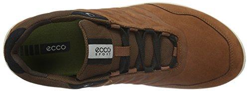 Ecco Exceed, Chaussures Multisport Outdoor Homme Marron (MAHOGANY02195)