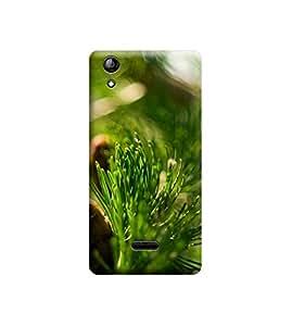 Ebby Premium Printed 3D Designer Back Case Cover For Micromax Canvas Selfie 2 Q340 (Premium Designer Cae)