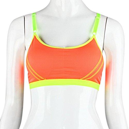 Sunnywill Frauen Yoga Sportlich Solide Wrap Brust Gurt Weste Tops Sportbüstenhalter für Mädchen Frauen Damen Orange