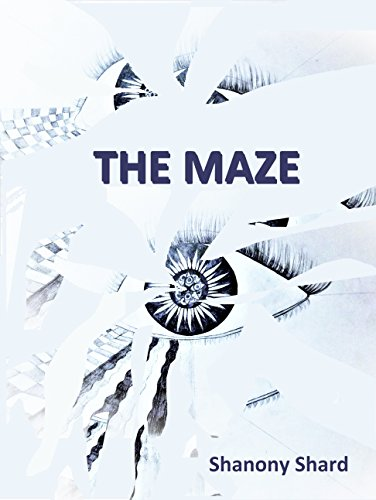 Book cover image for THE MAZE