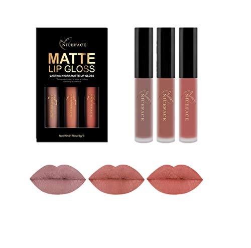 Familizo 3PCS Nouvelle Mode Rouge à Lèvres Liquide Mat Imperméable, Brillant à Lèvres (Poids Net: 6ML / PCS, 3B)