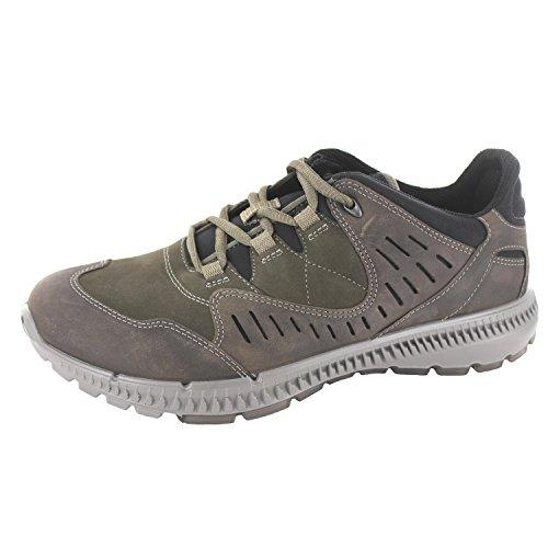 Ecco Terrawalk, Chaussures de Randonnée Basses Homme
