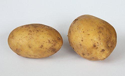 Pflanzkartoffeln 'Linda' 2,5 kg