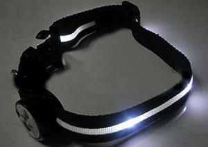 iclever®Collier Lumineux à blanc LED pour Chiens avec la taille réglable