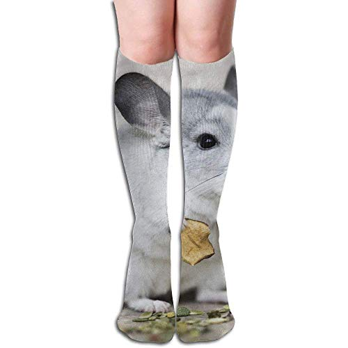 (Novelty Gym Crew Long Stockings Sock Unisex Chinchilla Comfortable Casual Running Knee High Socks One Size)