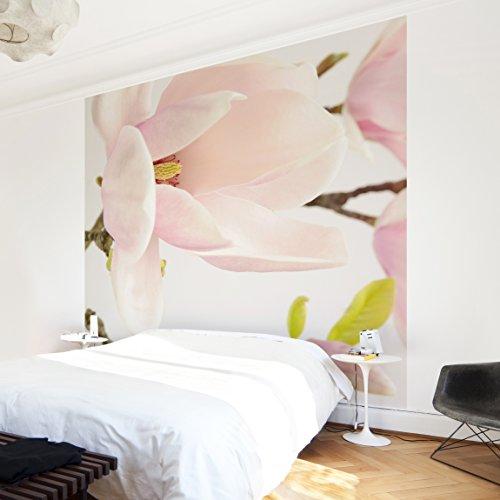 Vliestapete–Magnolia Trio 1–Wandbild, quadratisch, Dimension HxB: 240cm x 240cm - Magnolia Obst