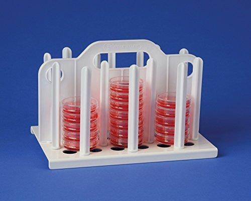 bel-art Produkte 18991–0060Petrischale Rack, 10–1/5,1cm X 6–3/10,2cm X 6–3/10,2cm 54Places, Kunststoff, 60mm