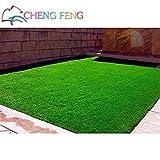 Fash Lady Clair: 200 Stück Spezial-Rasensamen für Rasen mit persistenten Laubblättern, echte Lebendige Pflanzen, die den Boden Decken und verschönern * Pet Love