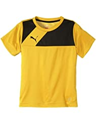 PUMA Kinder T-shirt Esquadra Training Jersey