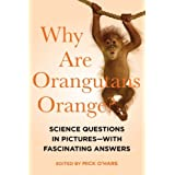 Why Are Orangutans Orange?: Science Questions in Pictures - with Fascinating Answers by O'Hare, Mick (2014) Paperback
