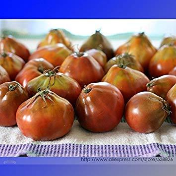 Pinkdose® 2018 Heißer Verkauf Seltene Heirloom Japonskij Schwarze Trüffel Tomaten Bio-samen, Professionelle Pack, 100 Samen/Pack, Lycopersicon Esculentum # NF960
