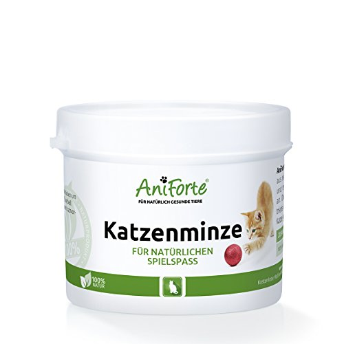 AniForte Katzenminze 20 g - Naturprodukt für Katzen