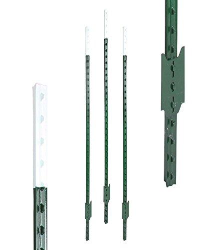 Eider Pays gasgeräte T de poteau 182 cm Vert Laqué, Lot de 80, Haute Qualité – Résistance à l'huile