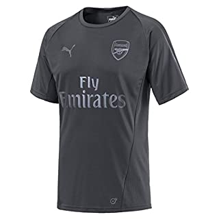Puma Herren Arsenal FC SS with EPL Sponsor Logo Training Jersey, Iron Gate, M