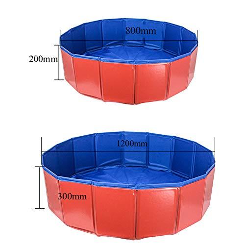 AGN Faltbare Haustier-Hundedusche, die Badewanne-Waschwanne-Haustier-Swimmingpool-Wasserteich im Freien Innen für kleine mittlere Hundekatzen badet-Oversized (Auto-springen-kit)
